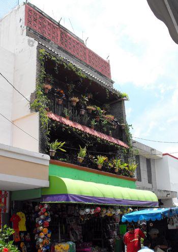 City garden, sm
