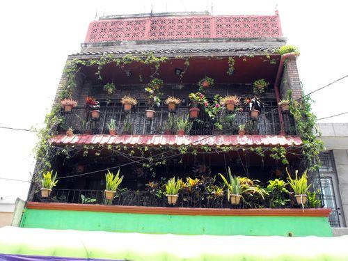 City garden2, sm