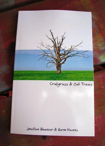Rhizome book