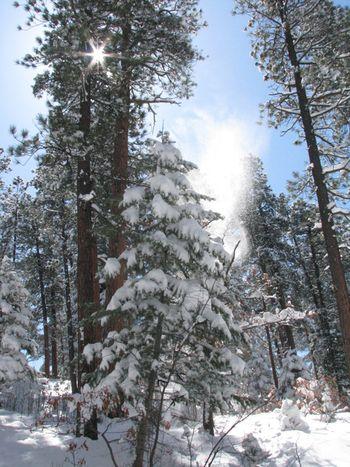Snow day6